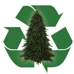 Christmas Tree Recycling Image